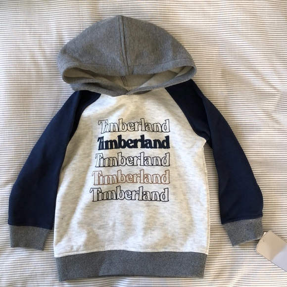Timberland Other - Timberland Toddler Hoodie and Pant set